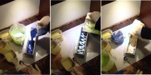 Caracoles proceso 2